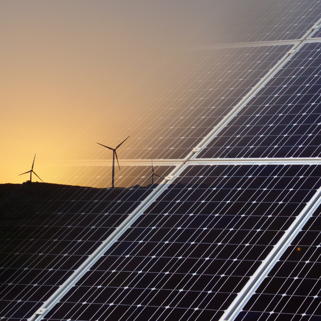 Environnement : tout savoir sur l'énergie verte