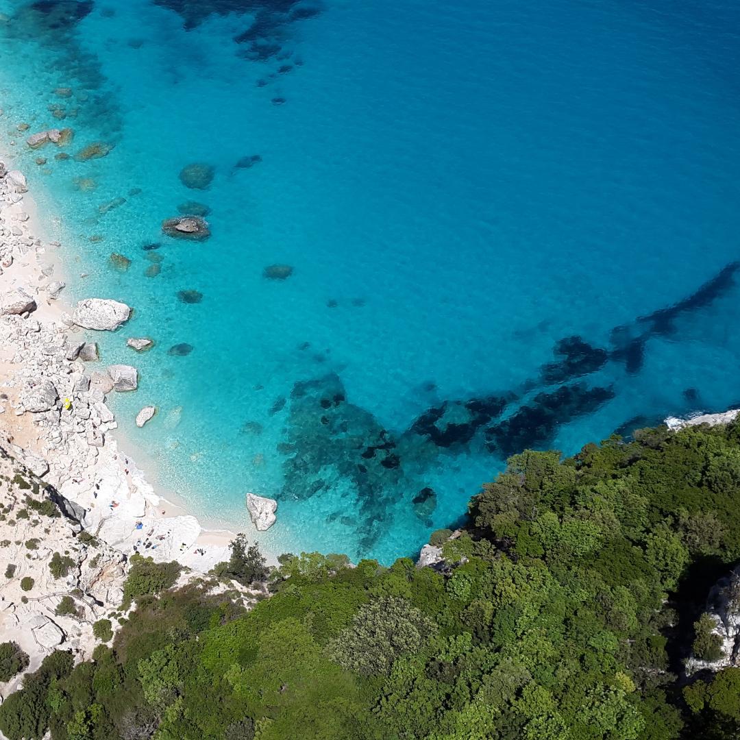 Méditerranée : selon un rapport les dégâts sur l'environnement menacent les populations