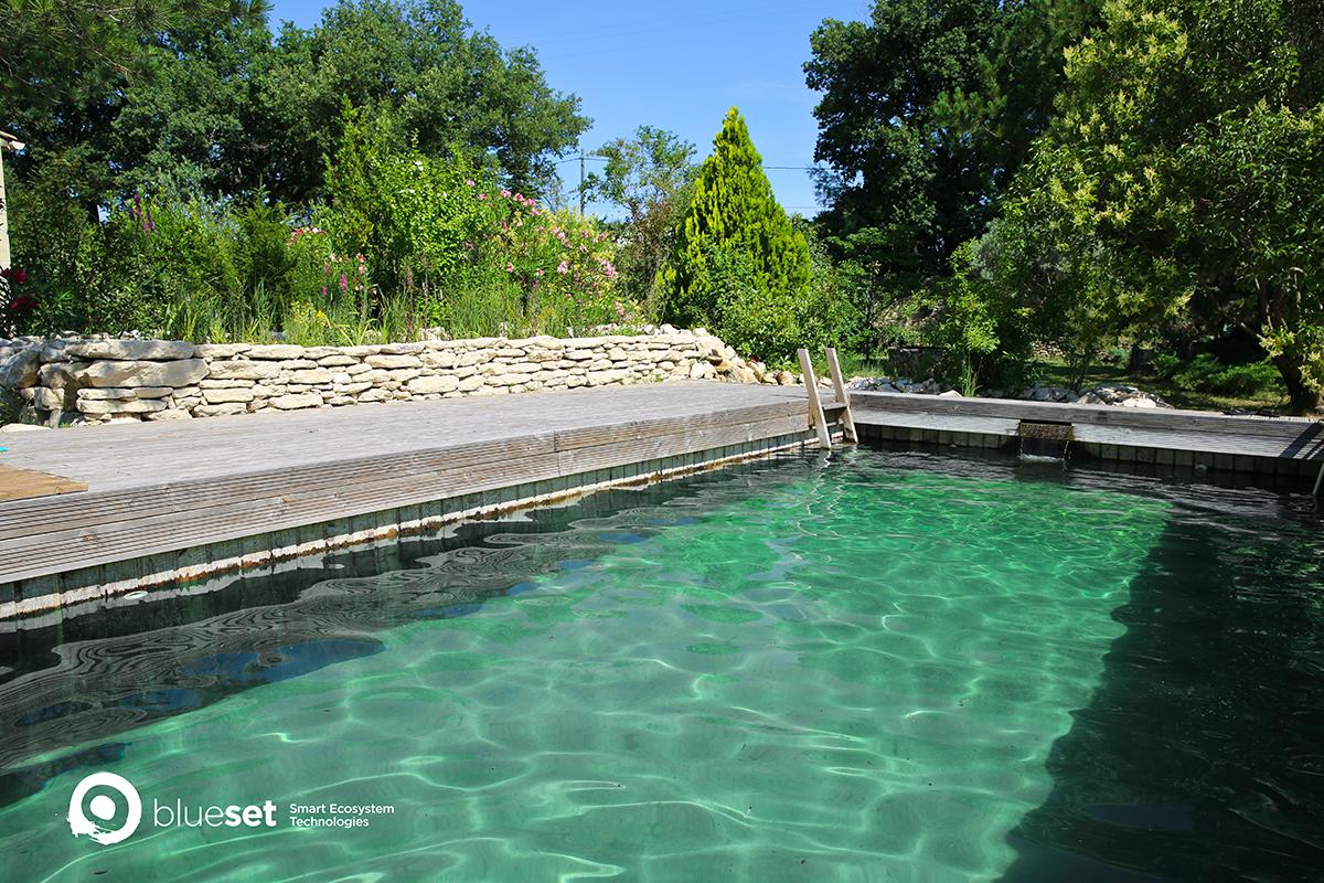 Quelle est la différence entre une piscine naturelle et une piscine traditionnelle ?
