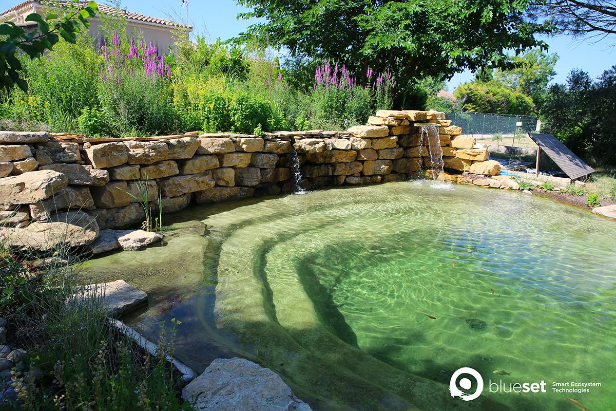 La piscine naturelle est-elle faite pour vous ?
